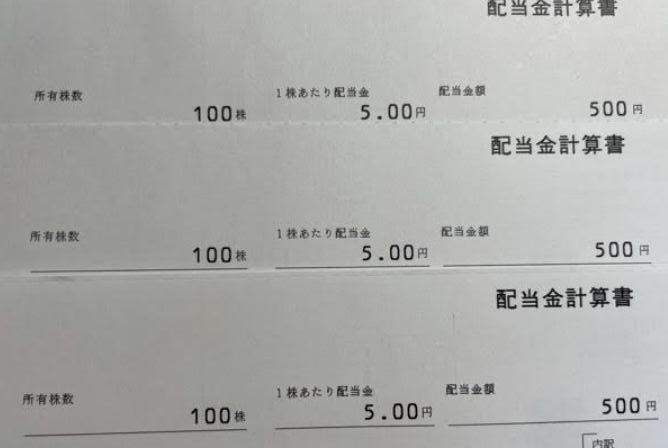 ビックカメラ3048より株主優待到着-4.